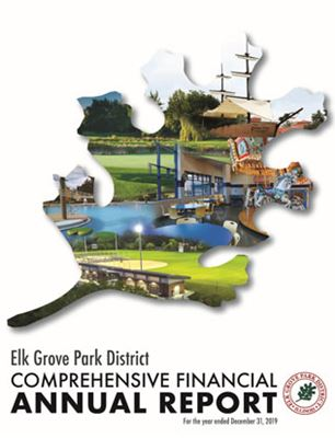 2019 Comprehensive Financial Annual Report